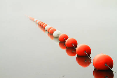 Photograph - A Line To The Unknown by Karol Livote
