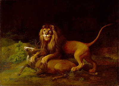 Painting - A Lion Attacking A Stag by George Stubbs