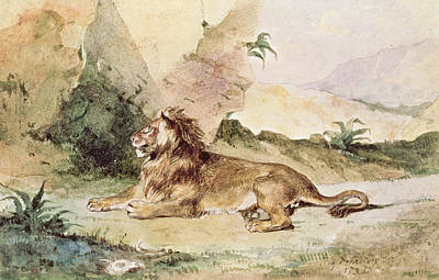 A Lion In The Desert Print by Ferdinand Victor Eugene Delacroix