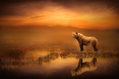 Animal Digital Art - A Lion's World by Jennifer Woodward
