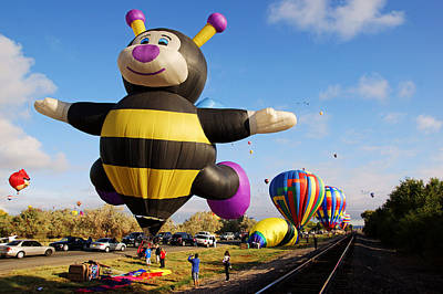 Photograph - A Little Bee Balloon At Balloon Fiesta by Daniel Woodrum