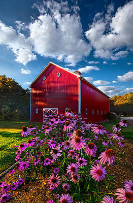 A Little More Country Art Print by Phil Koch
