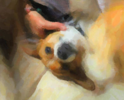 Dog Rescue Digital Art - A Little To The Left Please by Carolina Liechtenstein
