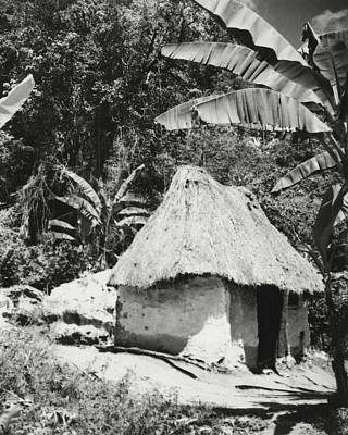 Photograph - A Local Hut In Haiti by Cecil Beaton