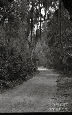 A Lonely Road Art Print by Debbie Bailey