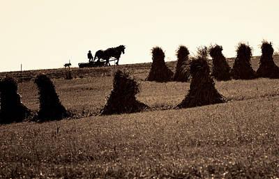 Photograph - A Long Hard Day II by Deb Buchanan
