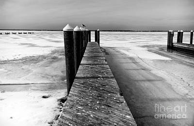 Photograph - A Long Winter Mono by John Rizzuto