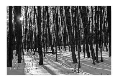 Photograph - A Long Winter's Day by Dan Hefle