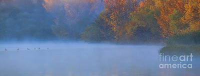 Photograph - A Lovely Foggy Morning by Elizabeth Winter