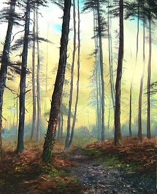 Nightjars Painting - A Lovely Walk On Cannock Chase by Jean Walker