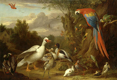 A Macaw, Ducks, Parrots And Other Birds In A Landscape Art Print