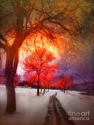 Winter Fun Digital Art - A Magic Winter by Tara Turner