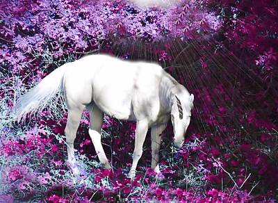 Black Unicorn Photograph - A Magical Unicorn In My Garden by Marilyn MacCrakin