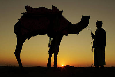 Repetition Photograph - A Man And His Camel Silhouetted by Piper Mackay