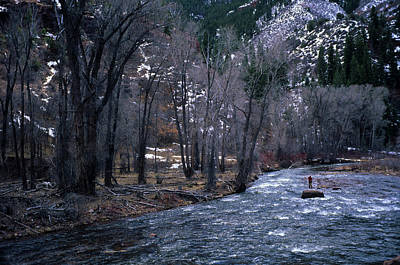 Colorado Fly Fishing River Wall Art - Photograph - A Man Fly Fishing In The Early Spring by Arthur Meyerson