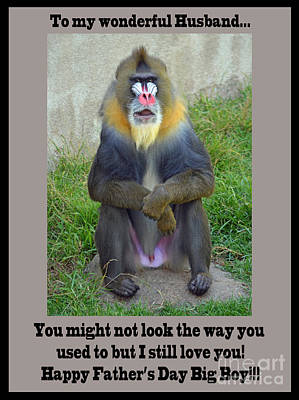 Photograph - A Mandrill Who's Not Very Shy About His Privacy Father's Day Version by Jim Fitzpatrick