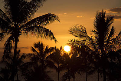 Photograph - A Maui Sunset by Kathleen Scanlan