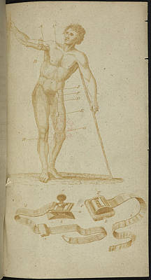 A Medical Diagram Of A Naked Man Art Print