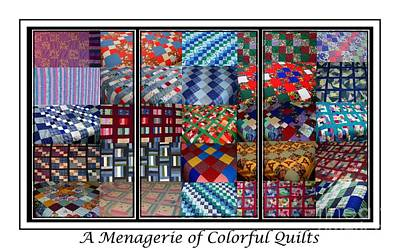 Block Quilts Digital Art - A Menagerie Of Colorful Quilts Triptych by Barbara Griffin