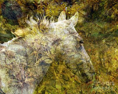 Judy Wood Digital Art - A Midsummer Night's Mare by Judy Wood