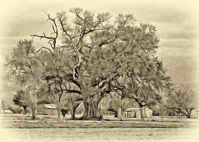 Oak Alley Plantation Digital Art - A Mighty Oak - Paint Sepia by Steve Harrington