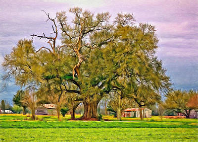 Oak Alley Plantation Digital Art - A Mighty Oak - Paint by Steve Harrington