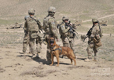 Camouflage Clothing Photograph - A Military Working Dog Accompanies U.s by Stocktrek Images