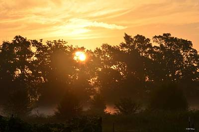 Photograph - A Misty Summer's Morning In July by Maria Urso
