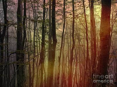 Meditative Digital Art - A Moment In The Woods  by Elizabeth McTaggart