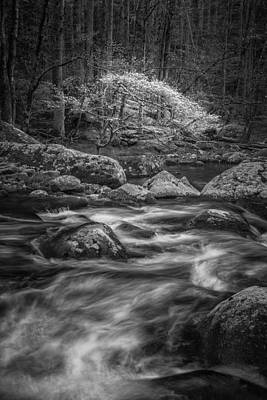 Tremont Photograph - A Monochrome Muse by Mike Lang