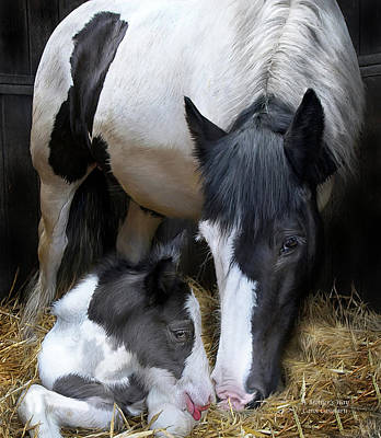 Horse Art Mixed Media - A Mother's Way by Carol Cavalaris