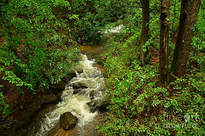 Photograph - A Mountain Stream After The Spring Rains by Bob Sample