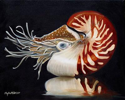 A Nautilus Study Art Print