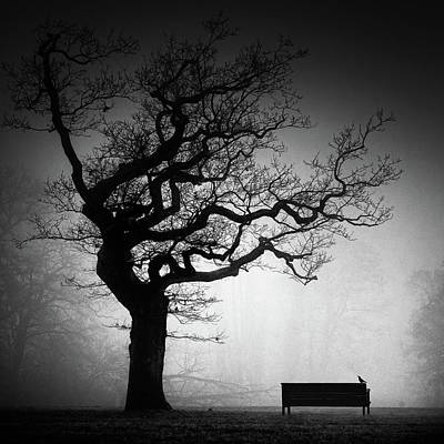 Benches Photograph - A Near Future by Oscar Lopez
