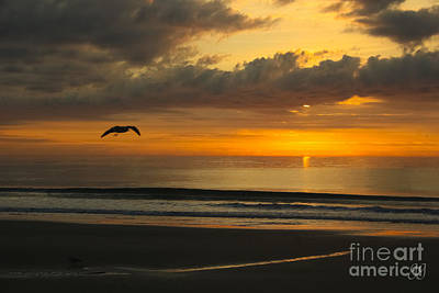 Photograph - A New Day by Geri Glavis
