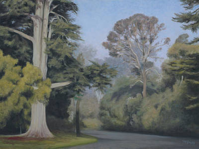 Wall Art - Painting - A New Day In Golden Gate Park by Terry Guyer