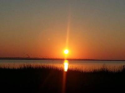 Art Print featuring the photograph A New Day Is Born by Joetta Beauford