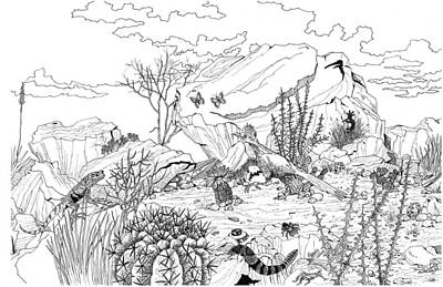 Roadrunner Drawing - A New Morning by Richard Brooks