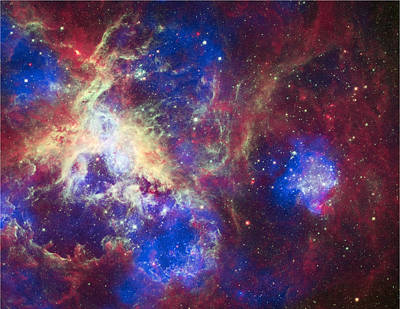 A New View Of The Tarantula Nebula Print by Space Art Pictures