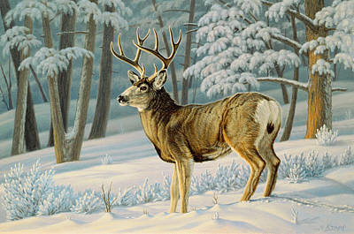 Mule Painting - A Nice Buck by Paul Krapf