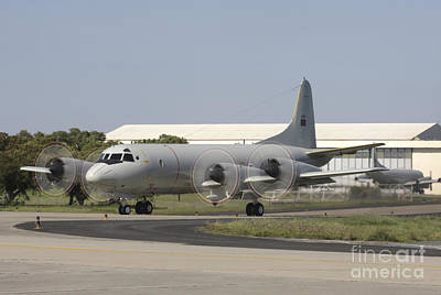 A P-3c Orion Of The Portuguese Air Art Print by Timm Ziegenthaler