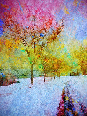 Photograph - A Painted Winter by Tara Turner