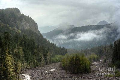Photograph - A Painterly Landscape - Mt. Rainier National Park by Chris Anderson