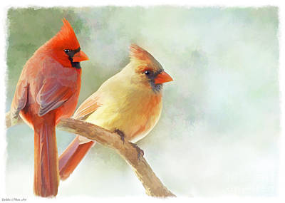 Photograph - A Pair Of Cardinal - Digital Paint I by Debbie Portwood