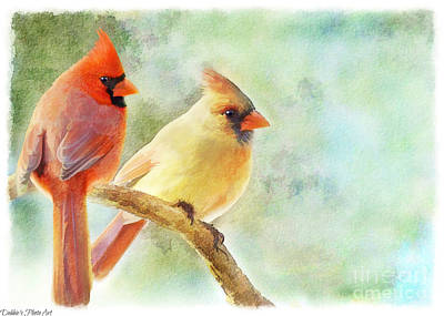 Photograph - A Pair Of Cardinals - Digital Paint II  by Debbie Portwood
