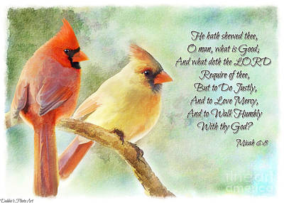 Photograph - A Pair Of Cardinals - Digital Paint With Verse II by Debbie Portwood