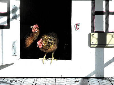 Painting - A Pair Of Hens Greeting A New Day by George Pedro
