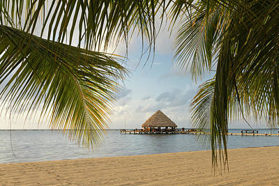 A Palapa And Sandy Beach, Placencia Art Print by William Sutton