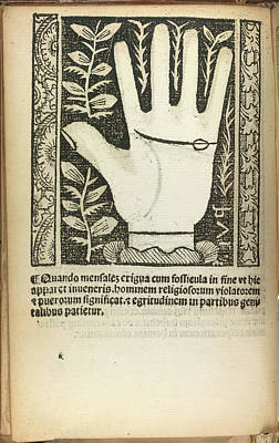 Palmistry Photograph - A Palm by British Library