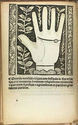 A Palm Art Print
